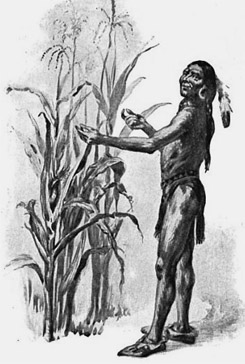 Internet racism hounds don't seem to bother the thousands of companies that use corn syrup in their products. Corn or Maize became a cash crop after the massacre of many Native American people. Corn is possibly the most racist agricultural crop.