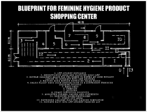 feminine-hygiene-products-diagram