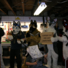 furries-for-the-second-amendment-nra-furry