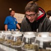 Obama announces Colorado Pot Shops to be polling stations in 2016 presidential ellection