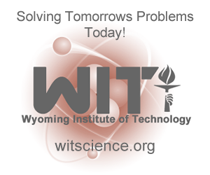 Wyoming Institute of Technology