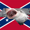 north-carolina-shark-attacks-confederate-flag-1